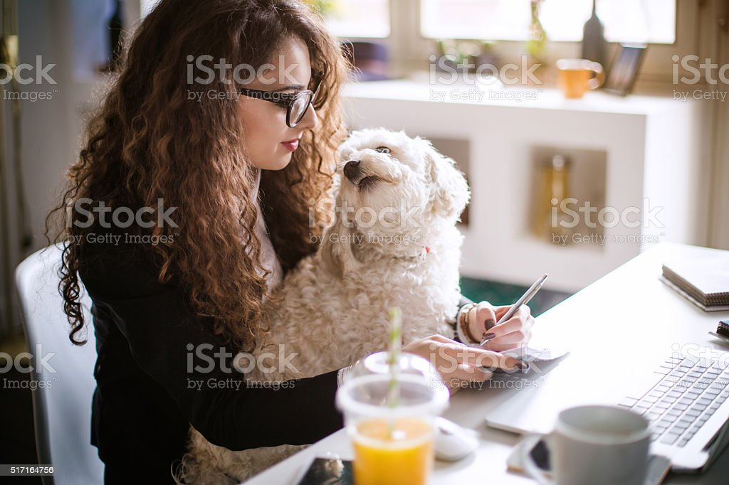 Designer working at home office and holding her puppy stock photo