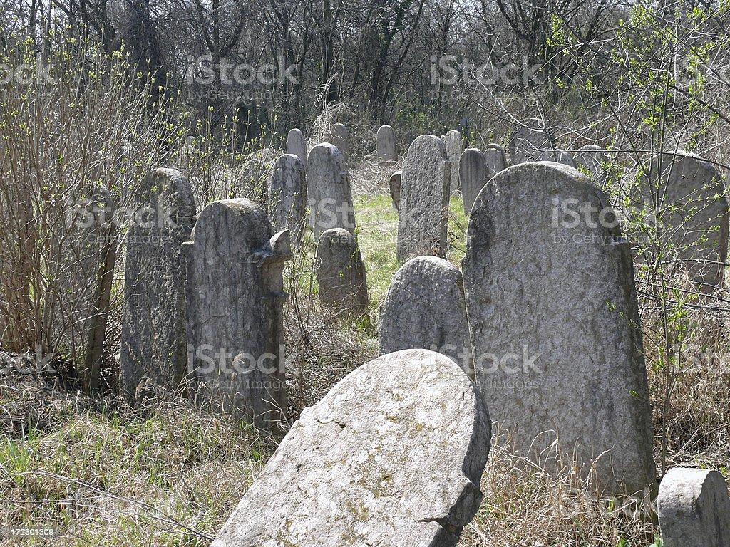 Desolate Jewish cemetery 3 royalty-free stock photo
