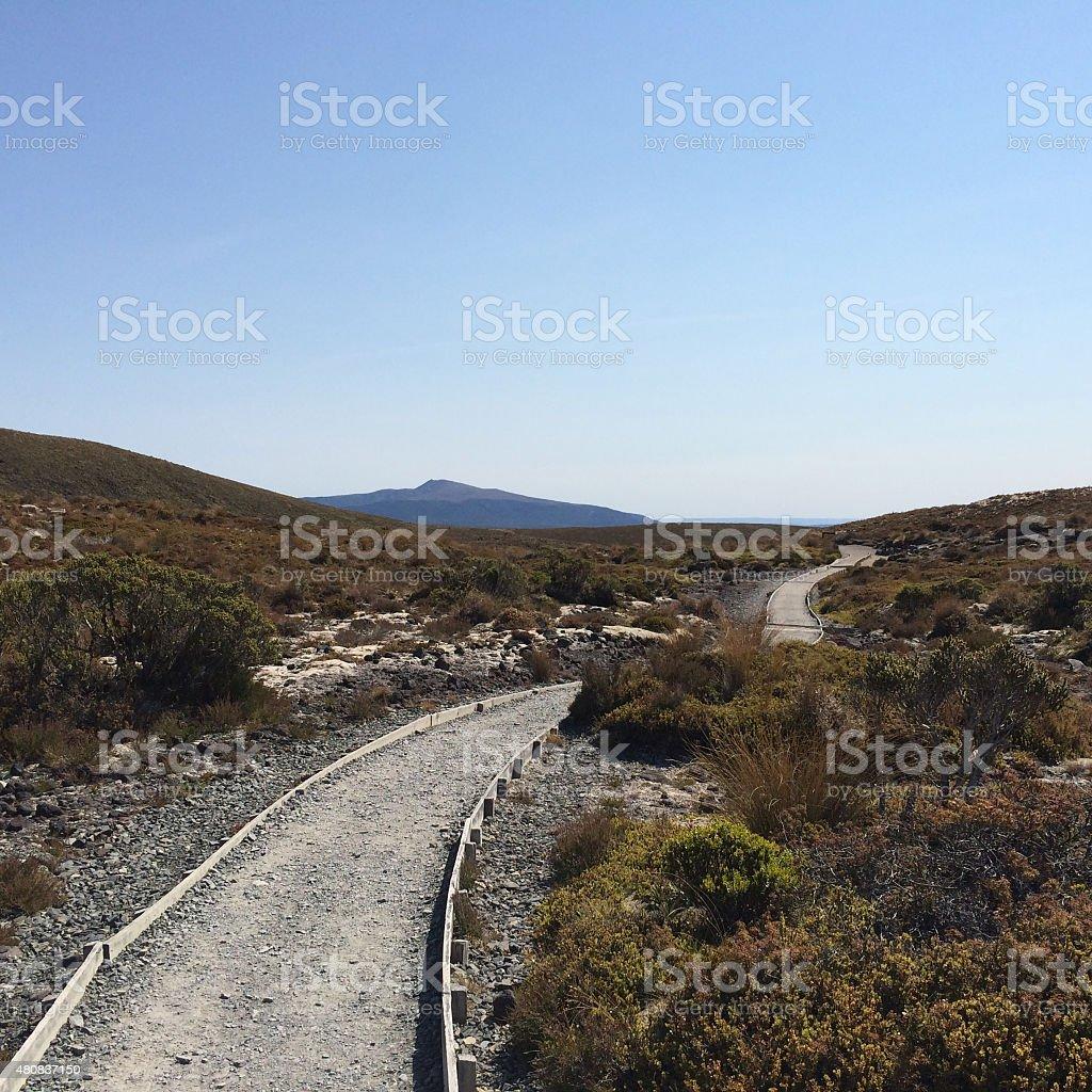 Desolate pathway royalty-free stock photo