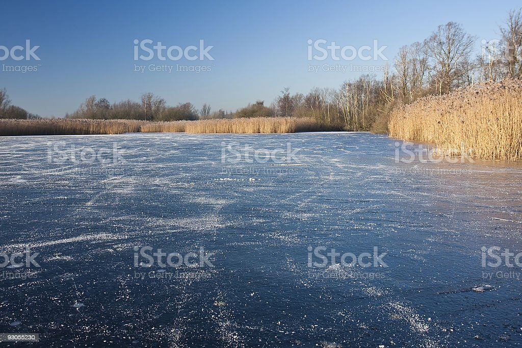 Desolate skating place; the Netherlands stock photo
