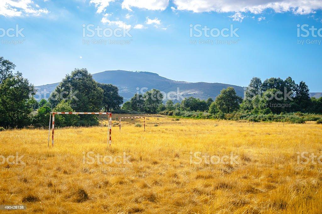 Dizimem campo de futebol na floresta foto royalty-free