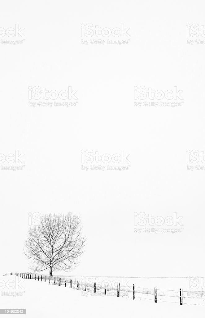 Desolate Winter Scene on the Snowbound Prairie royalty-free stock photo