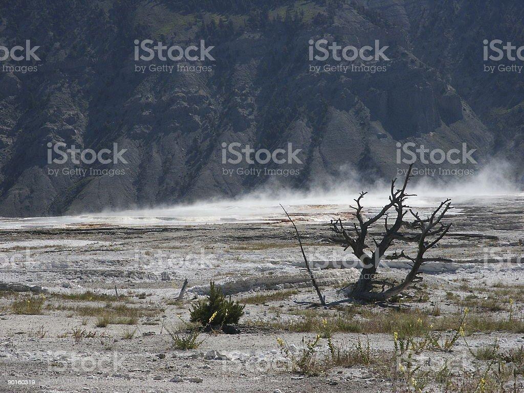 Desolateness stock photo