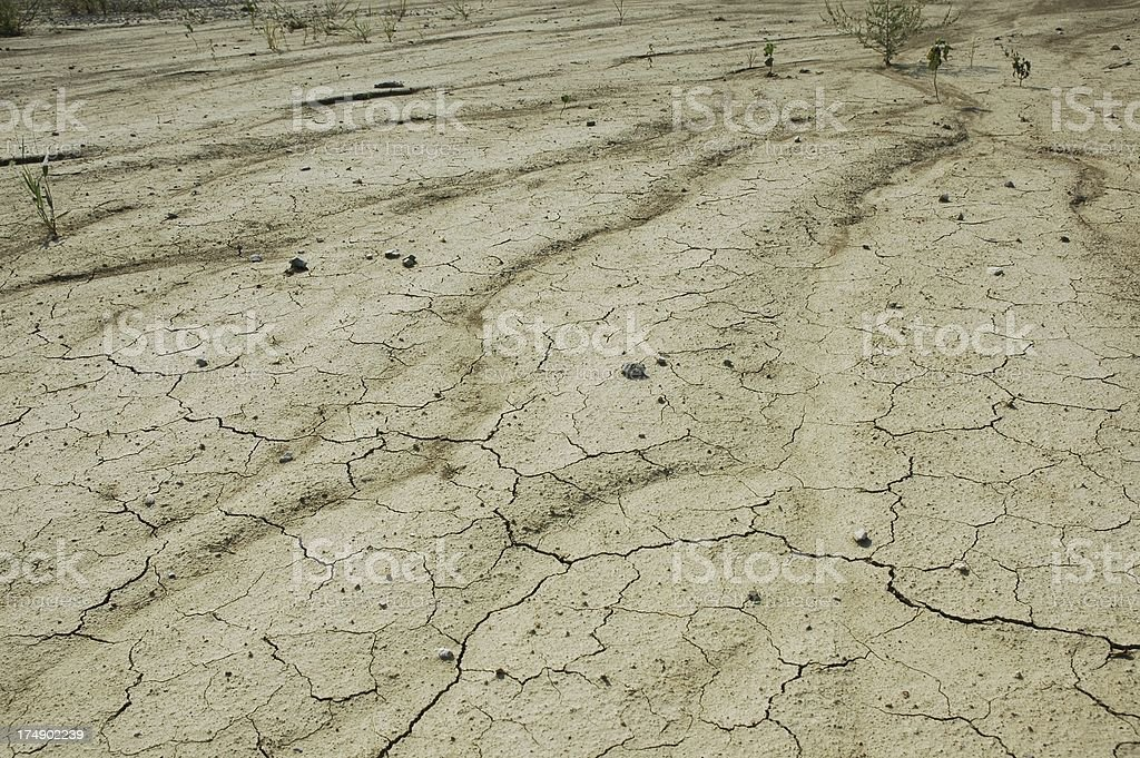 Desolation - Effect of Erosion and Topsoil Loss royalty-free stock photo