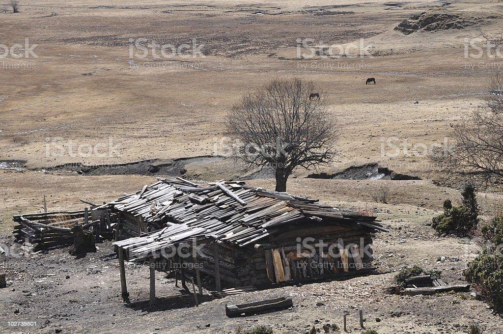Destitute farmhouse stock photo