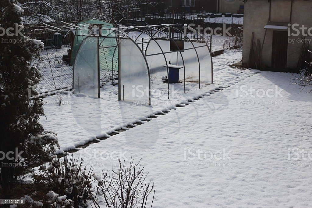 destroyed greenhouse in winter royalty-free stock photo