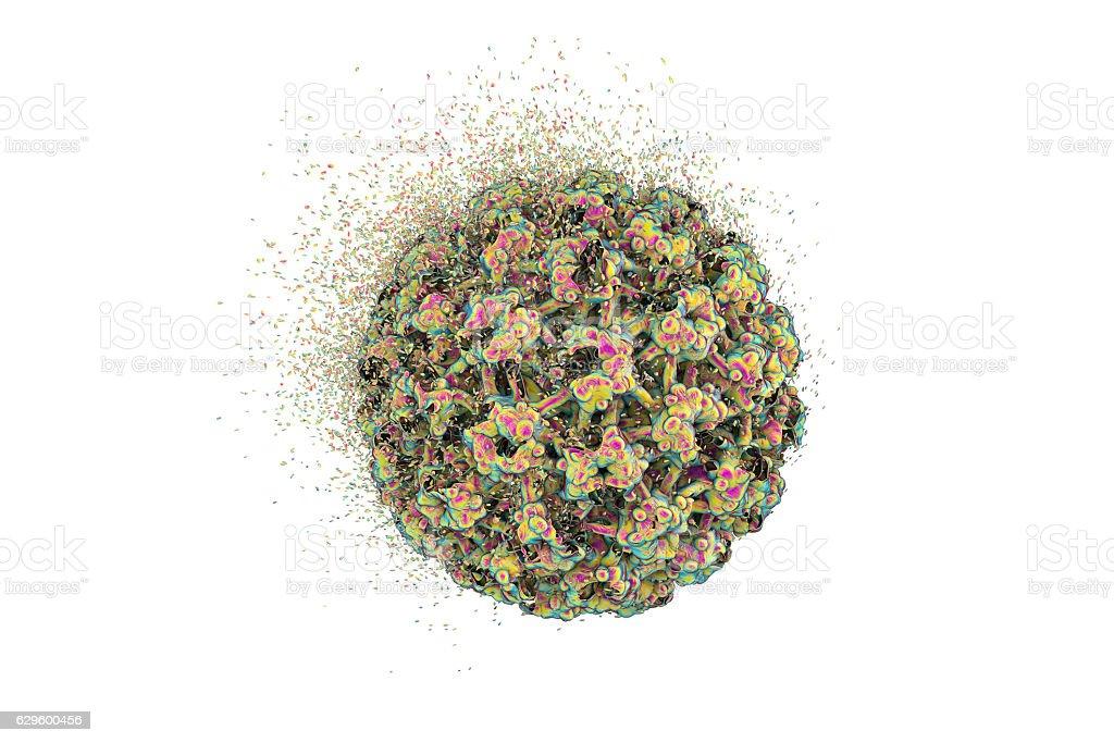 Destruction of Human Papillomavirus stock photo