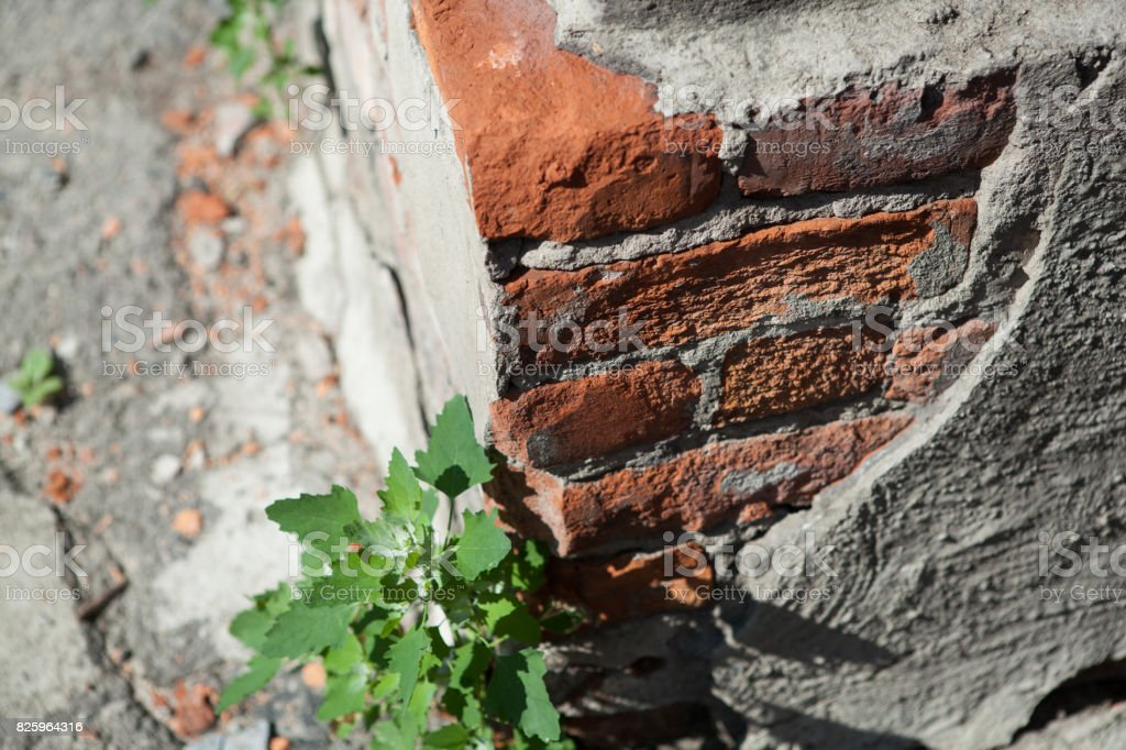 Destruction of the brick wall of the building close up stock photo