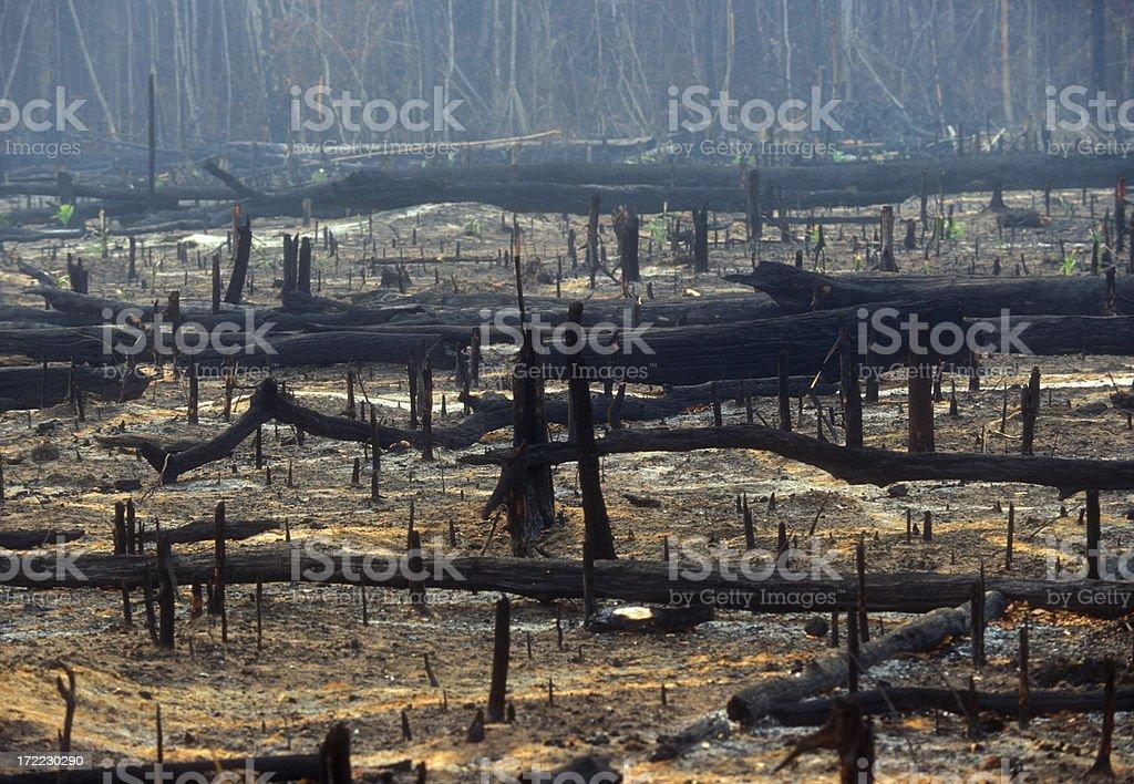 Destruction stock photo