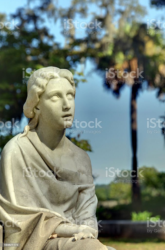 Detail - Bonaventure Cemetery stock photo