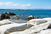Detail from Karidi beach, Sithonia - Greece