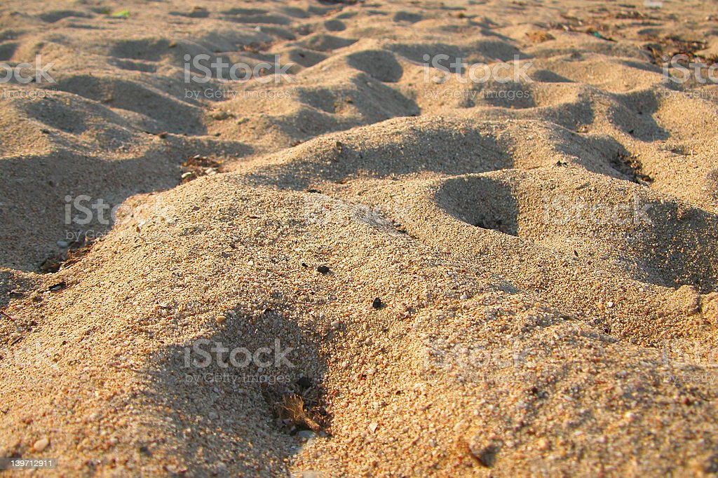 Detail from sand dunes royalty-free stock photo