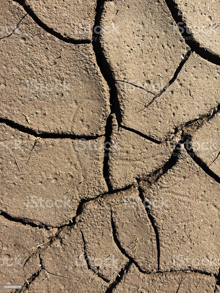 Detail of a Dry Lake Bed in Northern California royalty-free stock photo