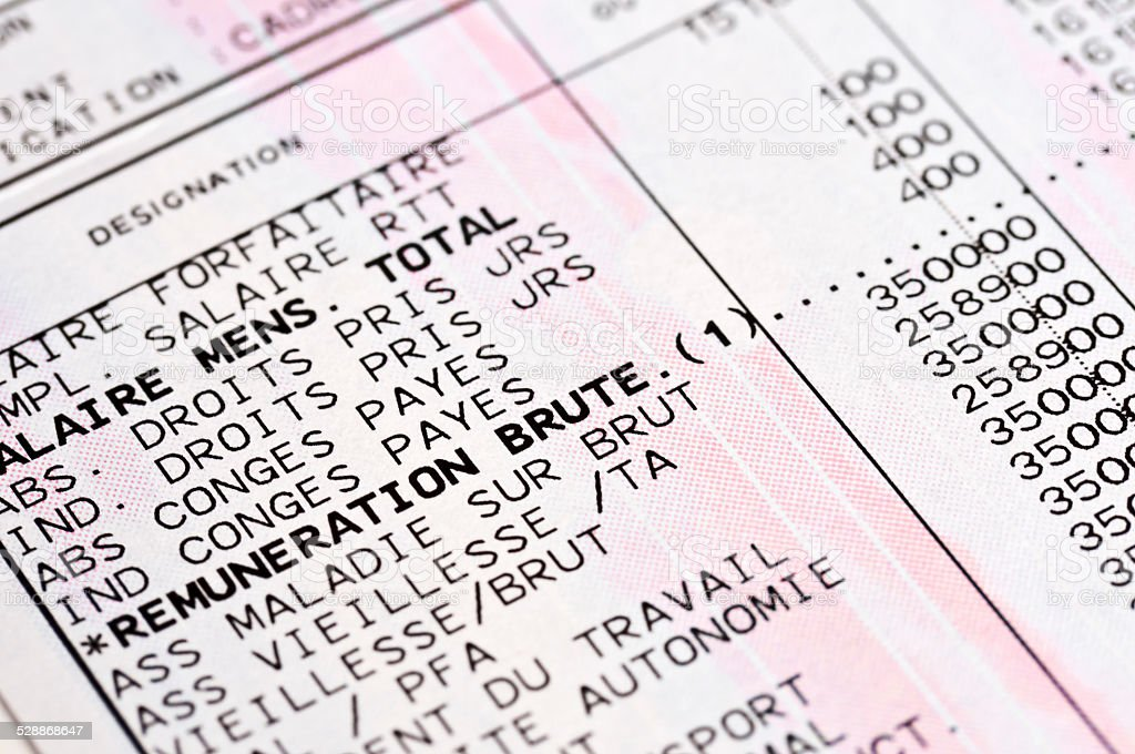 Detail of a French anonymous payslip stock photo