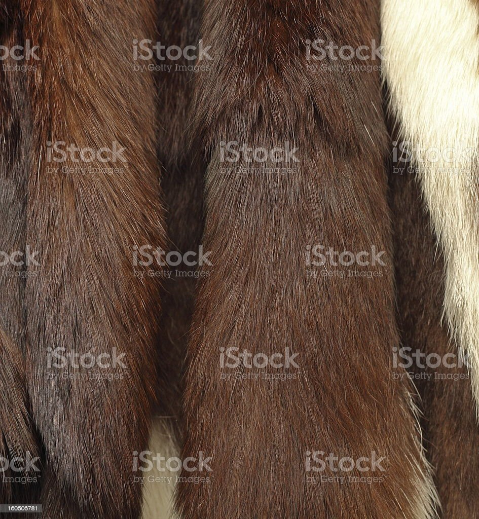 detail of a fur coat royalty-free stock photo