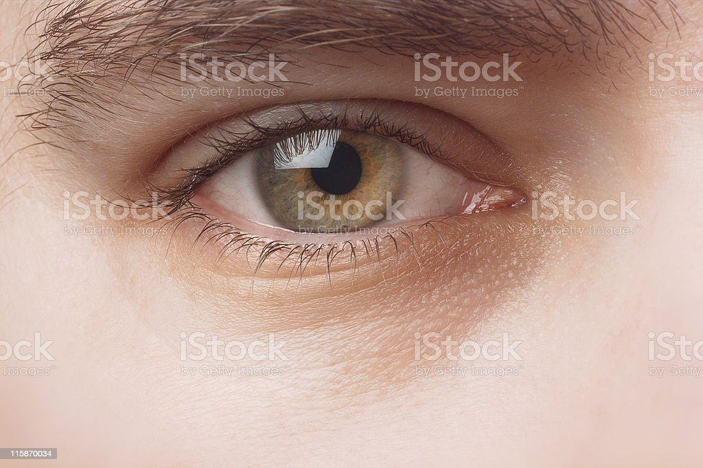 Detail of a human eye royalty-free stock photo