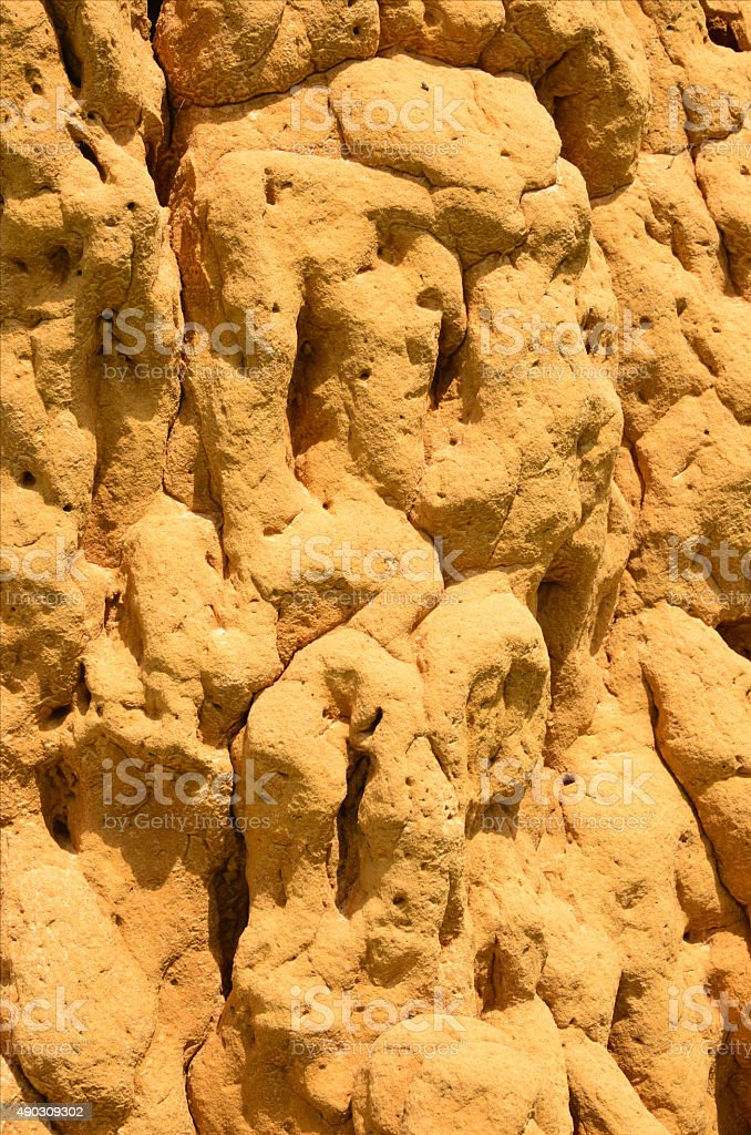 detail of a large termite mound stock photo