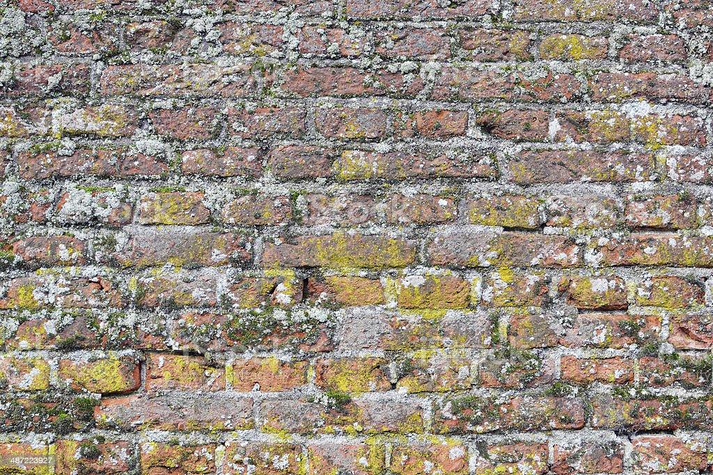 ディテールの堂々とした伝統の壁。 ロイヤリティフリーストックフォト