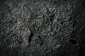 Detail of a Volcanic Rock - Etna Italy