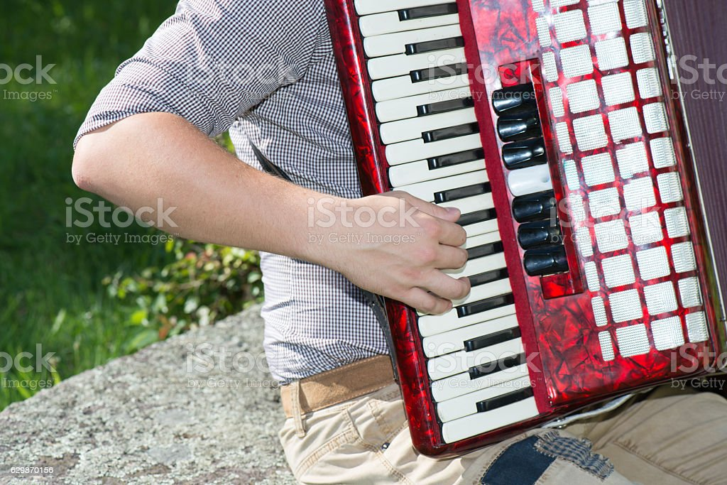 Detail of accordion player stock photo