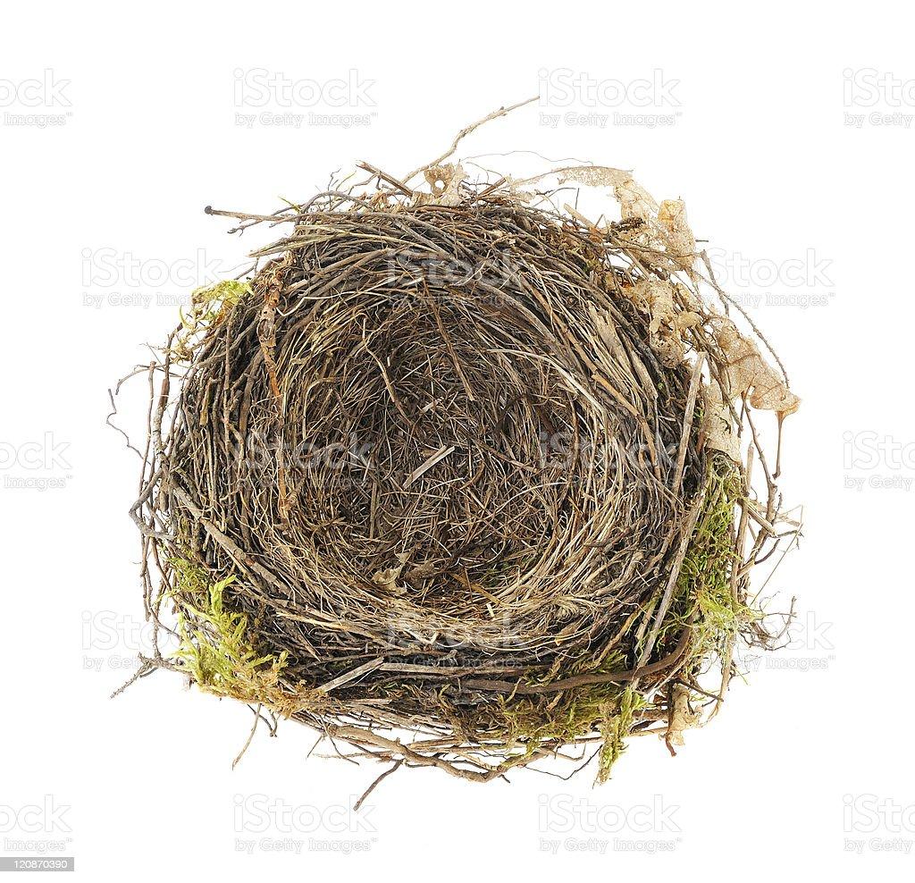 Detail of blackbird nest isolated on white royalty-free stock photo