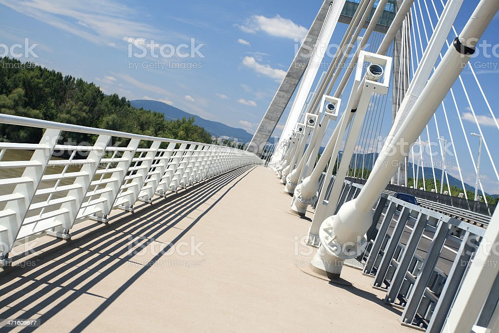 Detail of bridge (Hungary) royalty-free stock photo