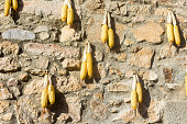 Detail of brik wall with corncobs.