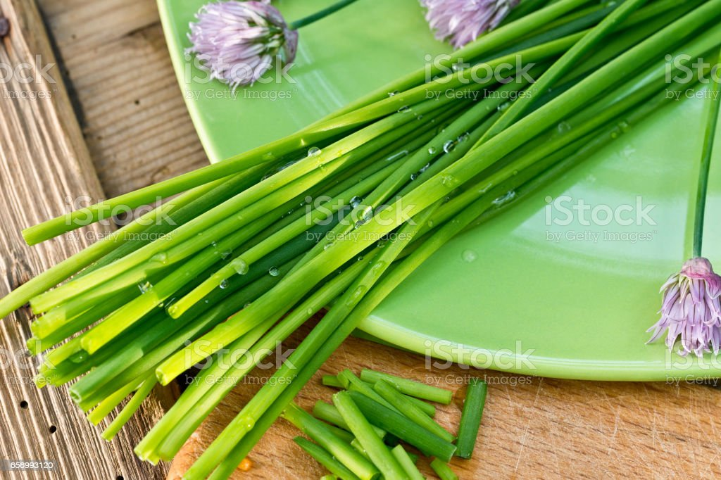 detail of chives on the green plate stock photo