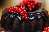 Detail of Chocolate Cake With Red Current
