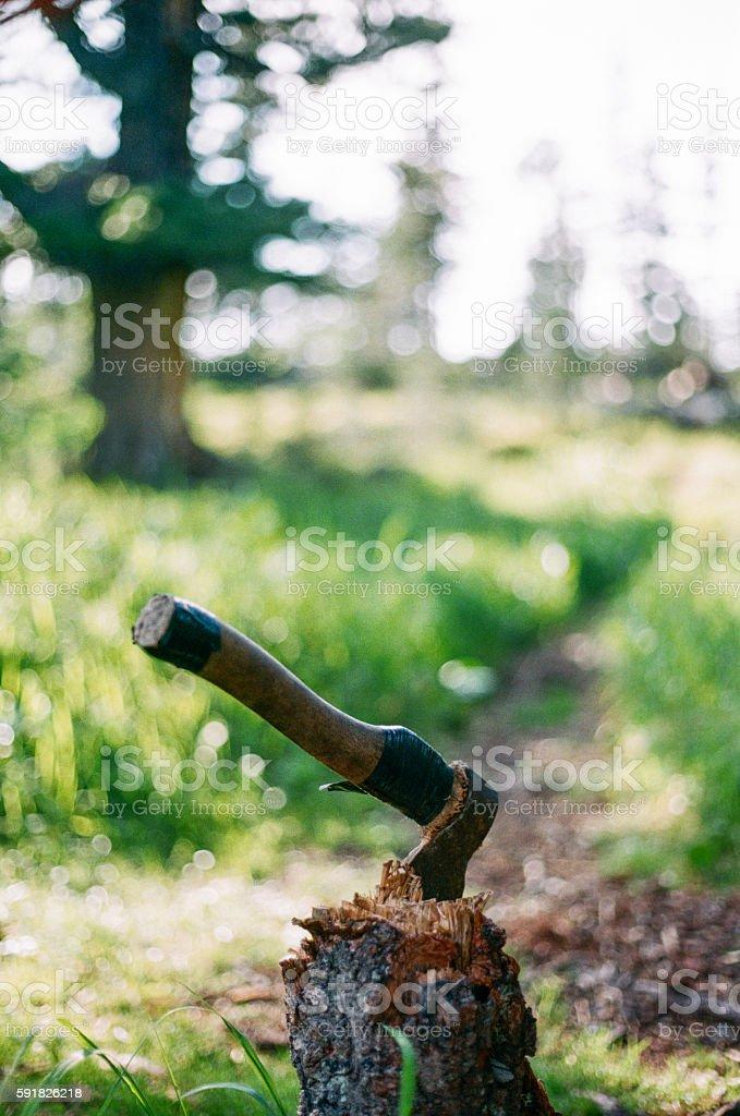 Detail of classic lumberjack axe royalty-free stock photo