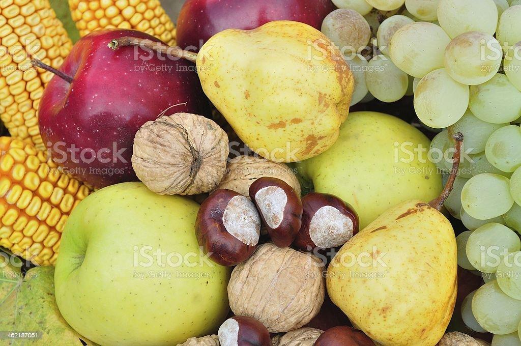 Szczegóły na świeże jesień owoców i warzyw zbiór zdjęć royalty-free