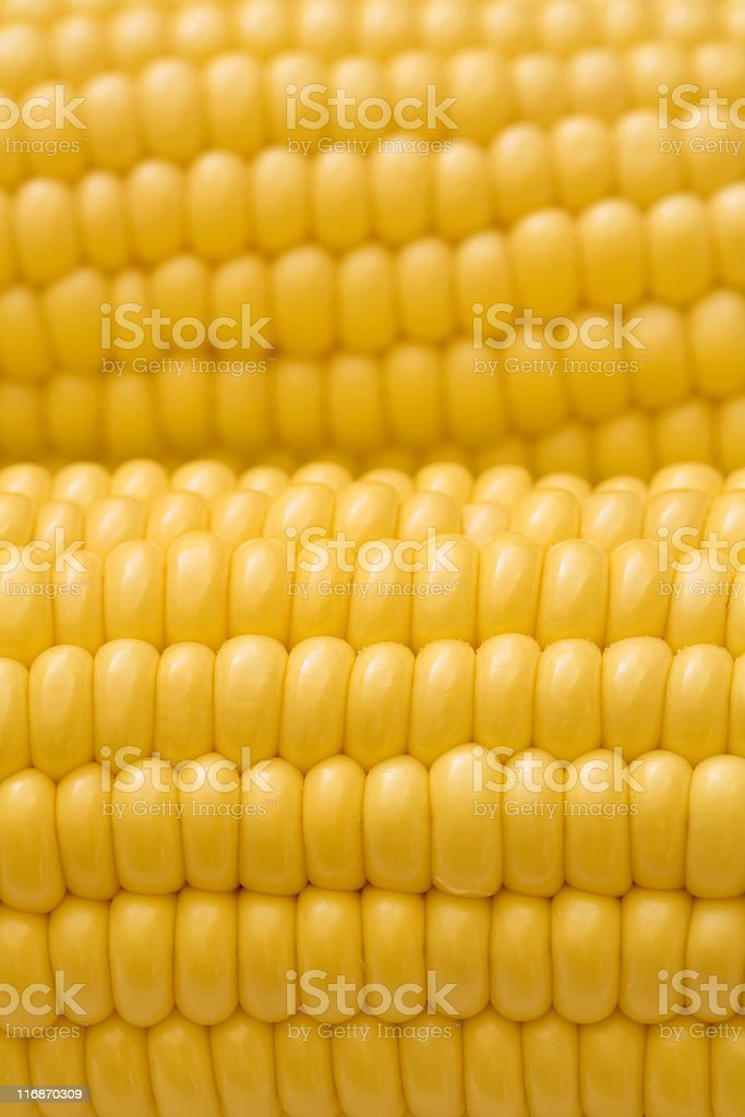 Detail of corn royalty-free stock photo