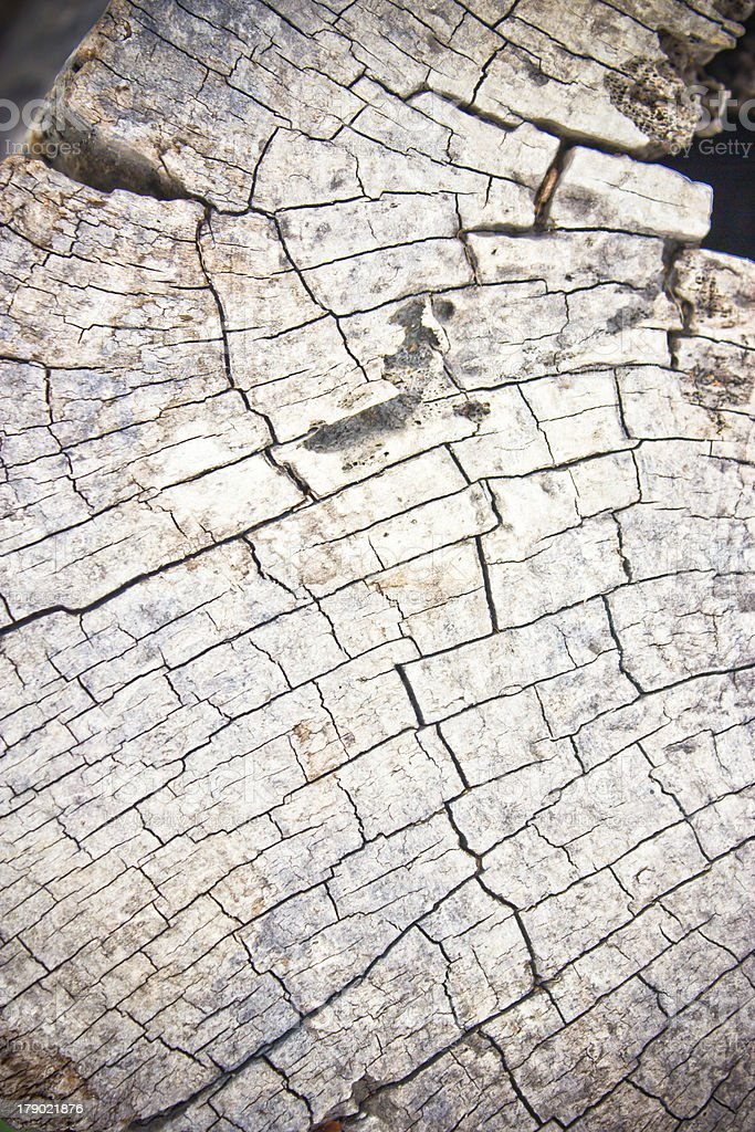 Detail of crack wood. royalty-free stock photo