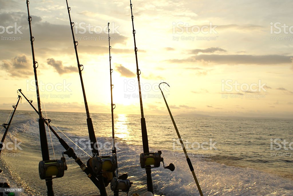 Detail of fishing poles used for deep sea fishing royalty-free stock photo