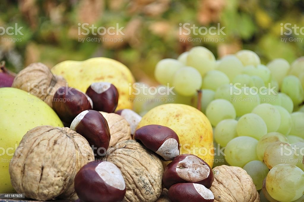 Szczegóły świeże na jesień owoców i warzyw zbiór zdjęć royalty-free