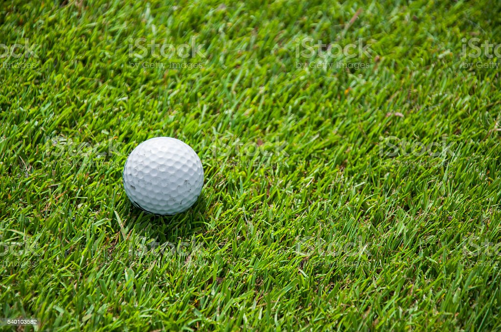 detail of golf ball on grass stock photo