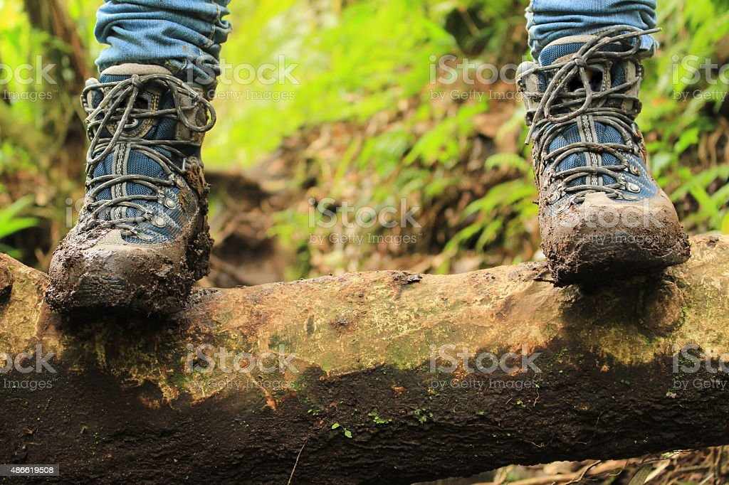 Detail of muddy boots in the rainforest, Panama. stock photo