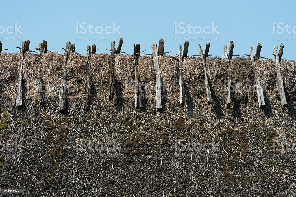 Detail of thatched roof on a barn on Oland, Sweden stock photo