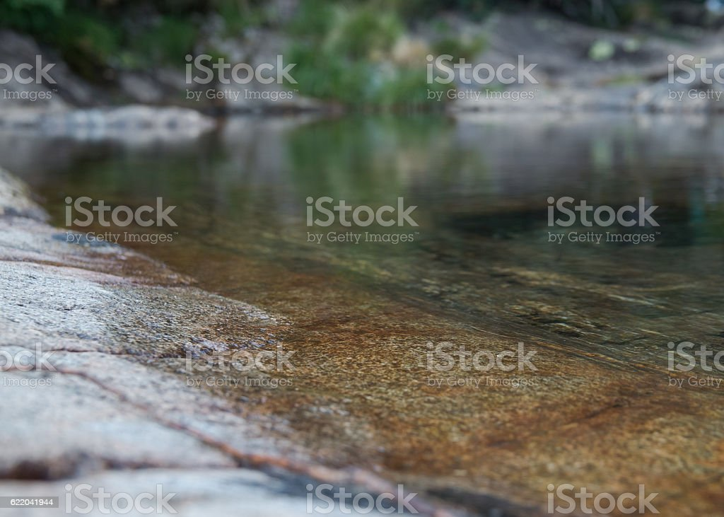 Detail of the border of a lake in calm stock photo