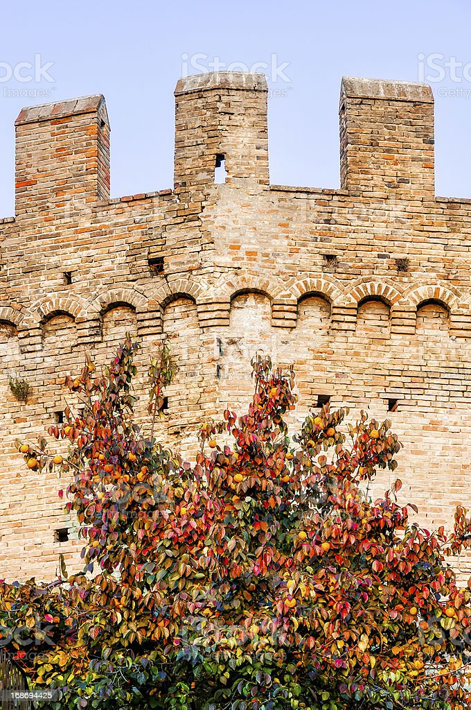 Detail of the Gradara's Bulwark royalty-free stock photo