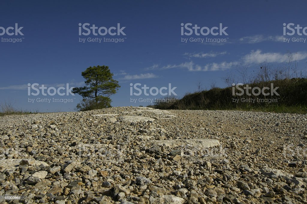 Detail on dirt road royalty-free stock photo