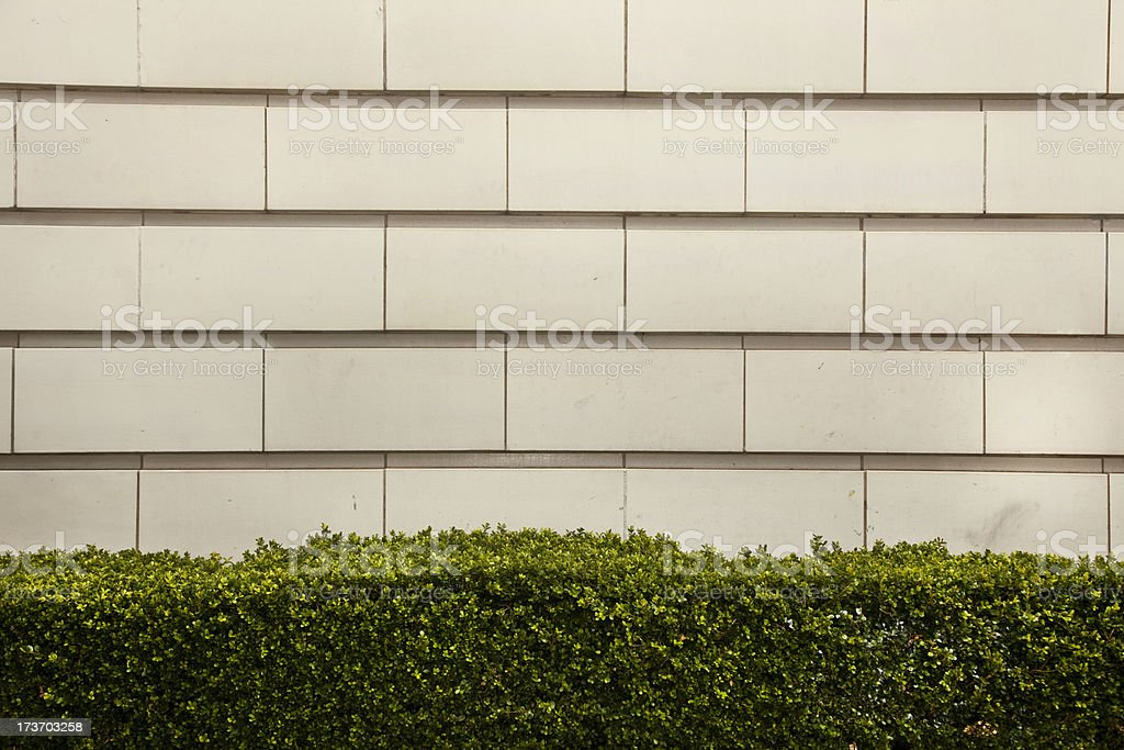 Detail royalty-free stock photo