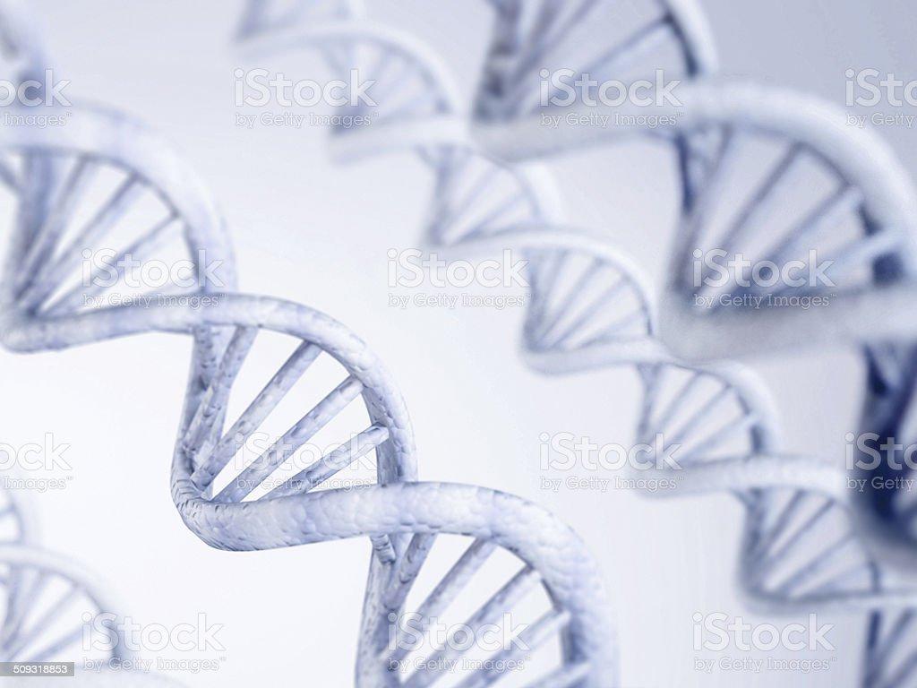 DNA detail stock photo