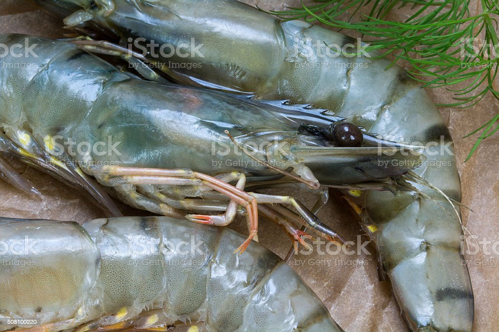 detail, raw black tiger prawns on rustic paper, close up stock photo