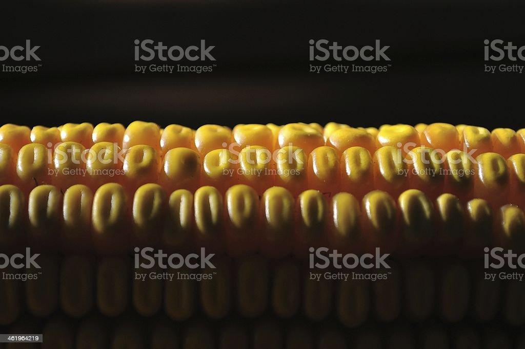 Szczegół zdjęcie żółty Kukurydza zbiór zdjęć royalty-free