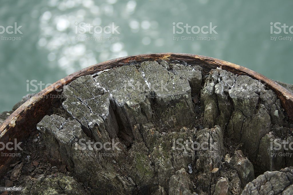 detail top of an old decaying dock post royalty-free stock photo