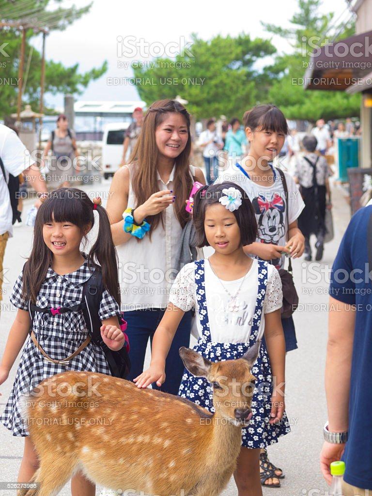 Detail with deer  at the street on Miyajima stock photo