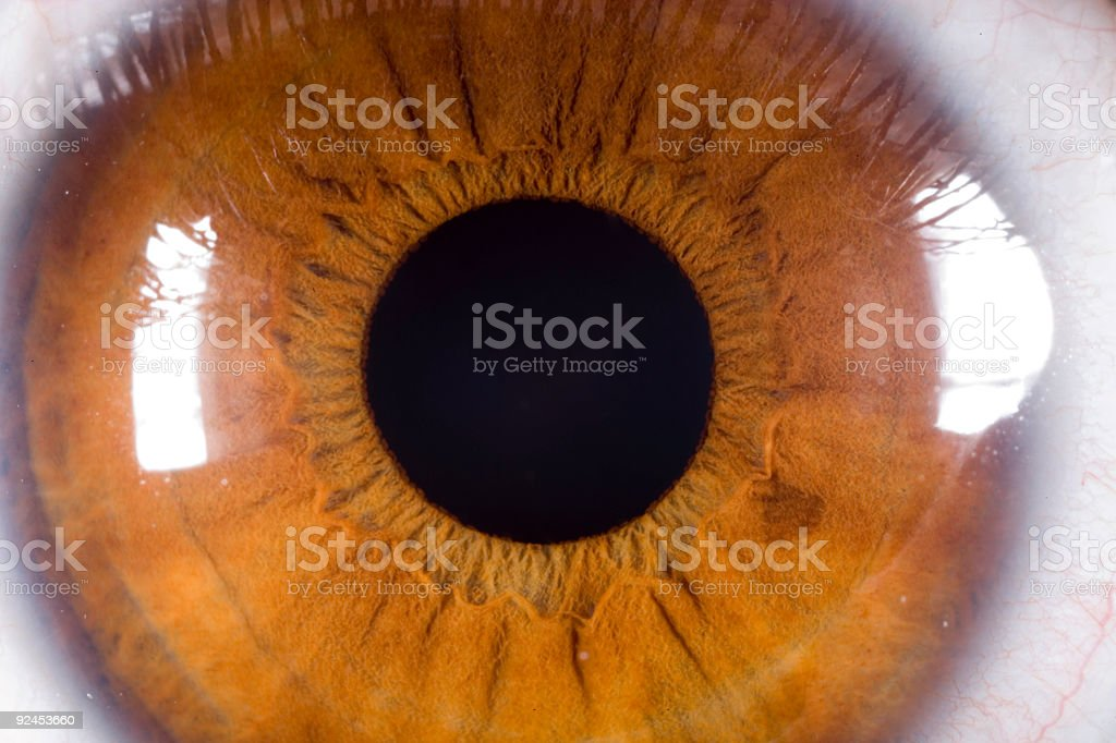 Detailed Eye stock photo