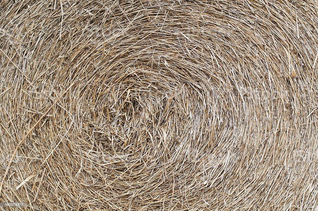 Detailed view of hay royalty-free stock photo
