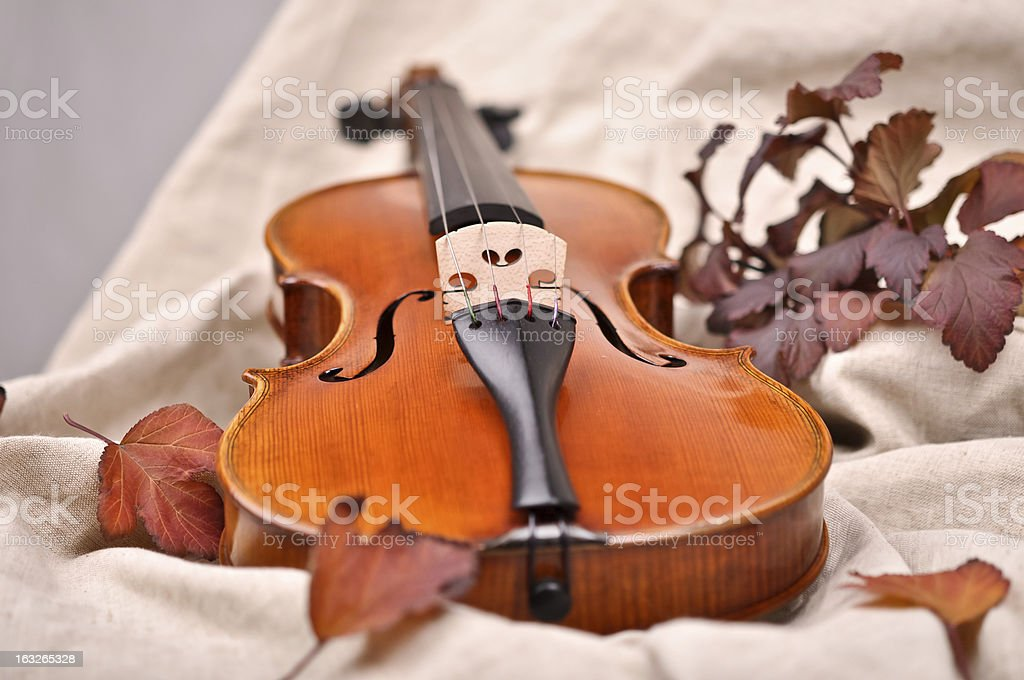 Details of a violin and autumn leaves on brown background royalty-free stock photo
